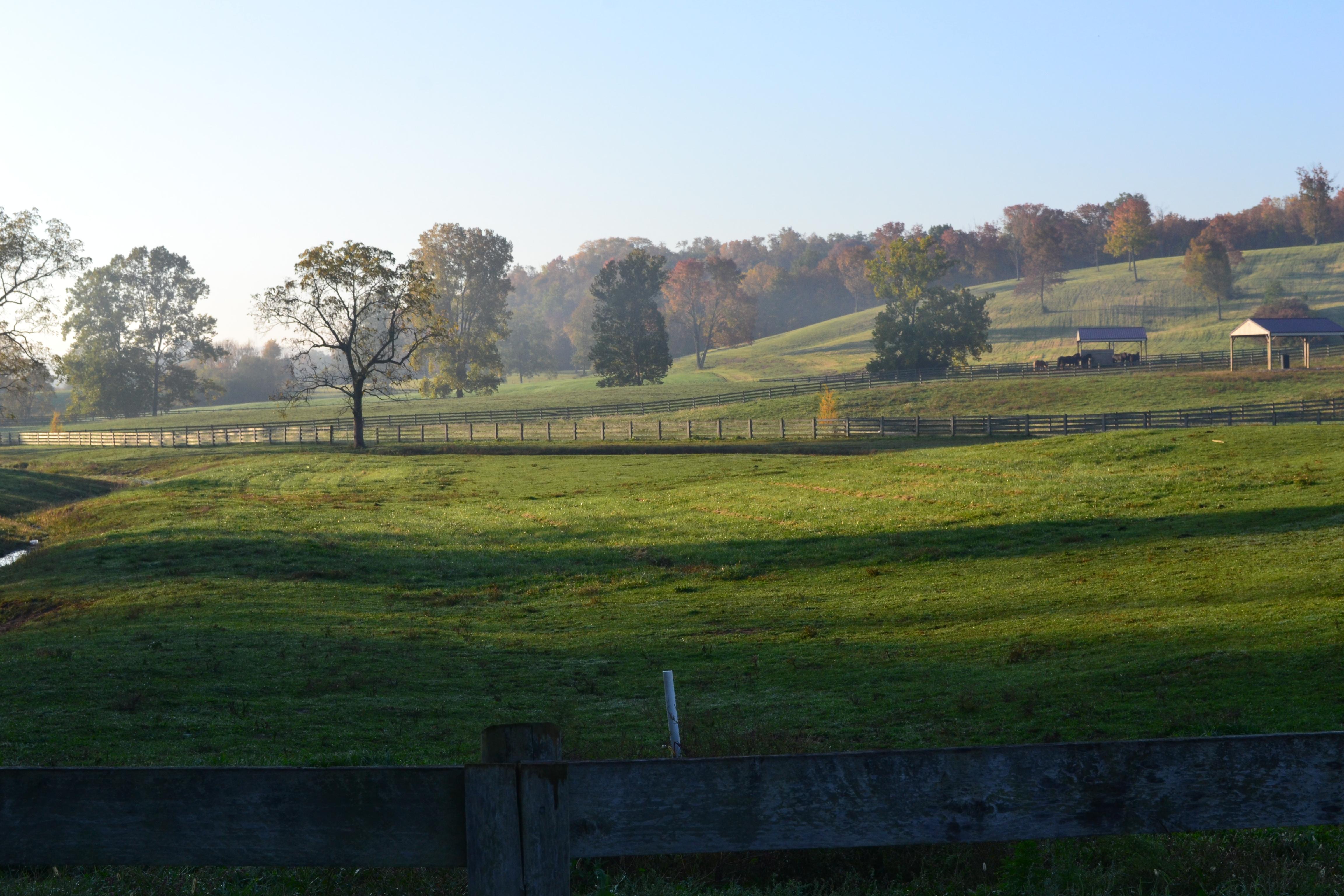 hermanhillsfarm
