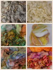 locks, fleece, wool,