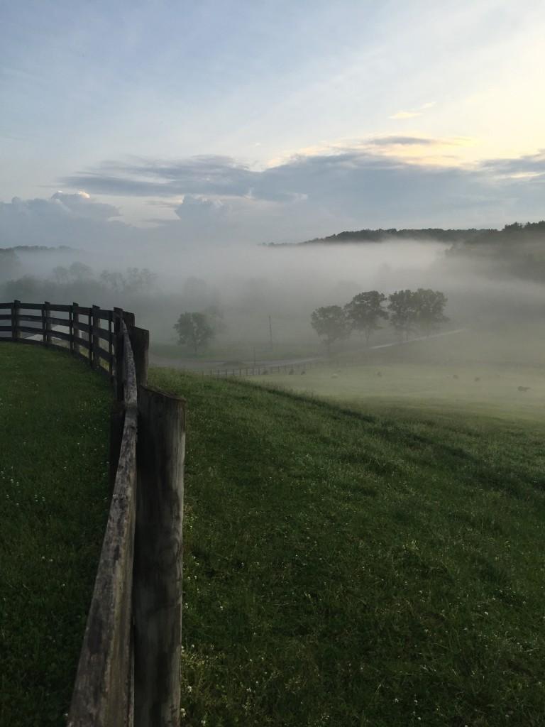 Herman Hills Farm